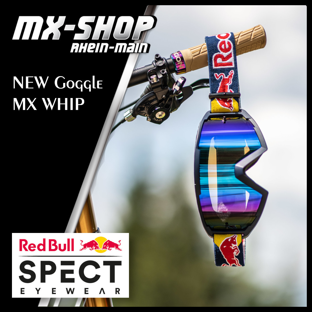 Red_Bull_SPECT_-_New_Goggle_1